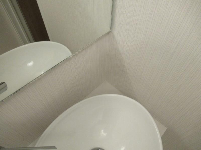トイレ手洗い奥のスペース